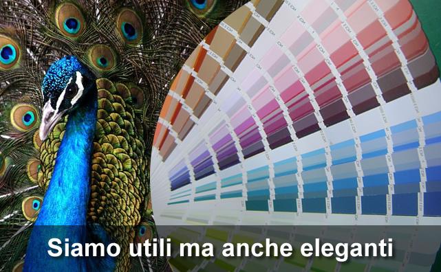 homecolorificio